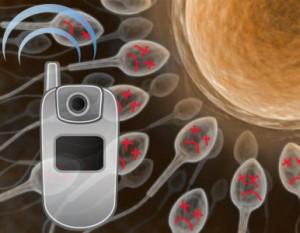 celulares-en-el-bolsillo-pueden-afectar-a-los-espermatozoides-293168_300_233_1